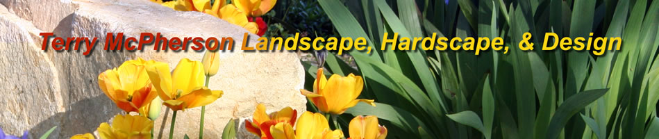 Landscaping in Chapel Hill, NC